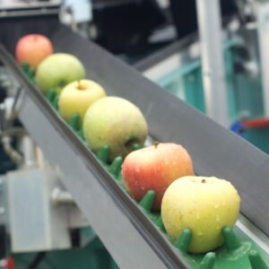 Fruit / Salad & Veg Equipment